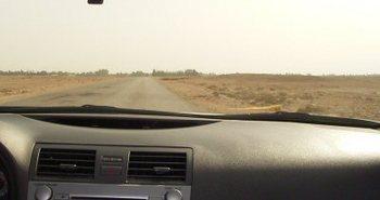カタールの農園.jpg