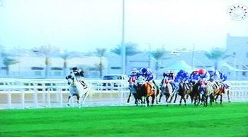 カタール競馬4.jpg