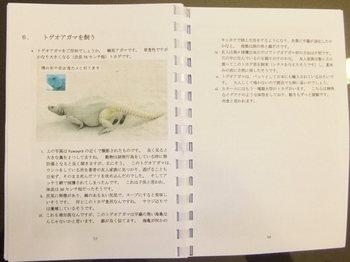 カタール遊々ハンドブックP57-P58.jpg