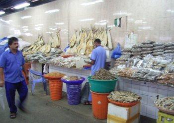 ドバイ魚市場4.jpg
