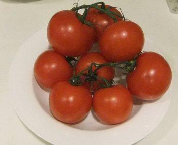 枝なりトマト.jpg